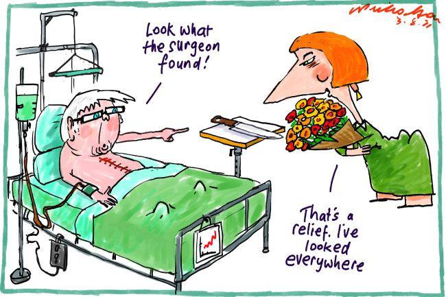 Rudd Recovers From Surgery Julia Visits Nicholsoncartoonscomau