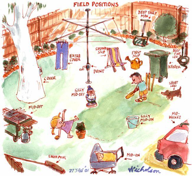 Jan positions in backyard cricket 650 | nicholsoncartoons ...