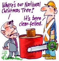 National Tree lost 226233