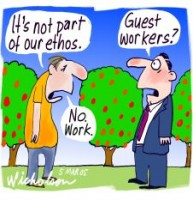 Guest workers not part of ethos 226