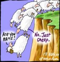 RAMS and Stock Market behaviour 226233