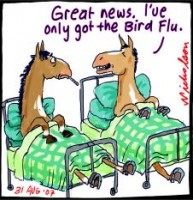 Horse flu outbreak good news 226