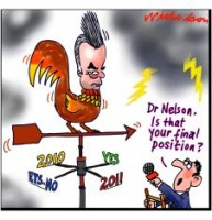 Nelson new position on climate 226