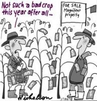 Rudd to buy Torrale cotton farm 226