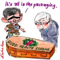 coffin for health scheme 226