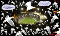 _Seagulls_havoc_at_MCG_night_football_650
