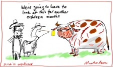 2012-02-29 Rudd as miserable cow unpublished 650