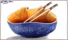 Ord River Scheme #2 goes to Zhongfu corporation China cartoon 2012-11-14