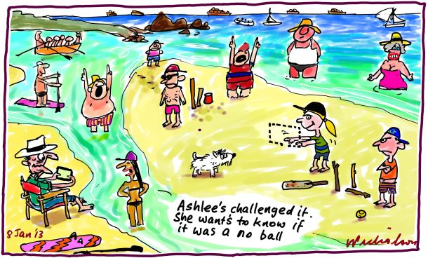 Beach Cricket summer holidays third umpire cartoon 2013-01-08