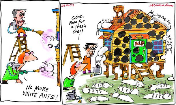 White ants killed have eaten ALP Julia Gillard Wayne Swan 2013-03-28