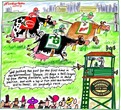 Warrnambool Cheese and Butter takeover horse race with cows Bega Murray Goulburn Saputo Buisness cartoon 2013-11-16