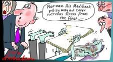 Medibank float stress Margin Call cartoon 2014-12-05