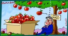 Harry Debney apple surplus  Australian cartoon Margin Call  2015-06-04