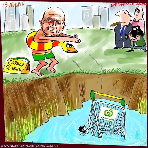 Cairns new chairman Woolworths rescue trolley from lake Margin Call The Australian cartoon 2015-08-29