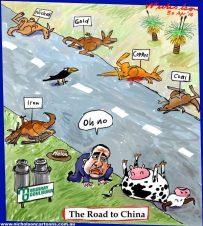 2016-04-30 Road to china milk road kill 600