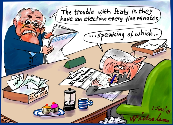 2018-06-01 Italy in economic trouble elections Morrison Turnbull Financial Review cartoon
