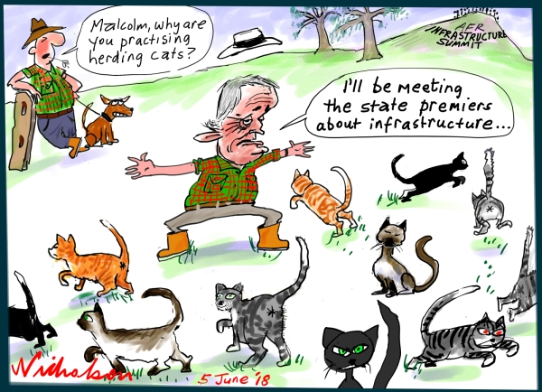 2018-06-05 Herding cats Turnbull infrastructure summit cartoon Australian Financial Review