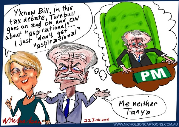 2018-06-22 Plibersek Shorten tax cuts aspirational Australian Financial Review cartoon