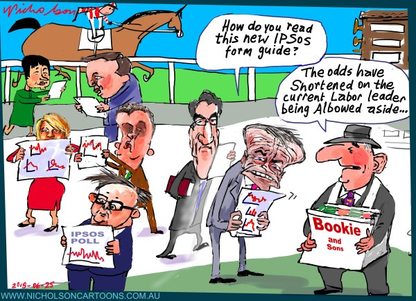 2018-06-25 IPSOS poll form guide Shorten Albanese Australian Financial Review cartoon