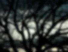 blur-01